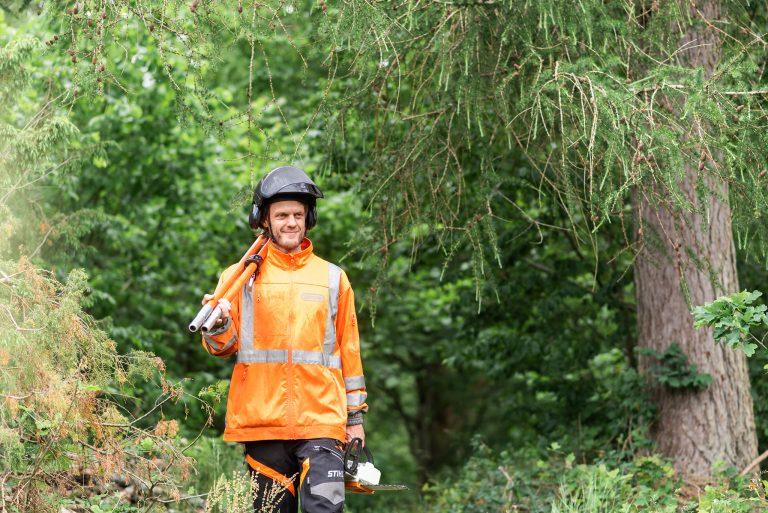 Trädfällning i Skåne arborist som erbjuder hjälp att fälla träd